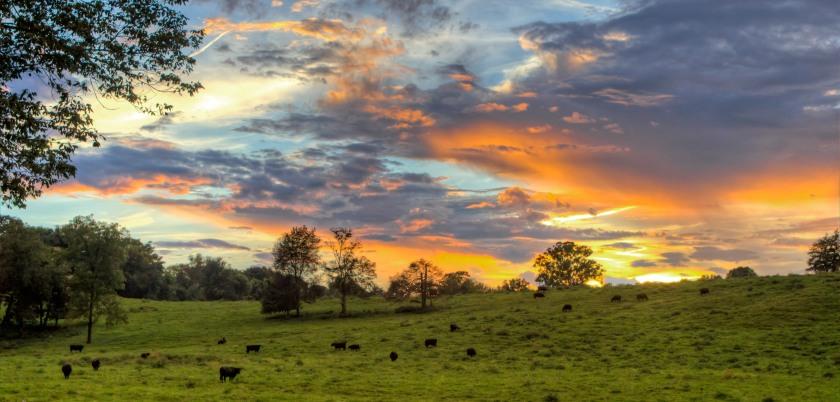 thomas-st-sunset-0903-tonemapped