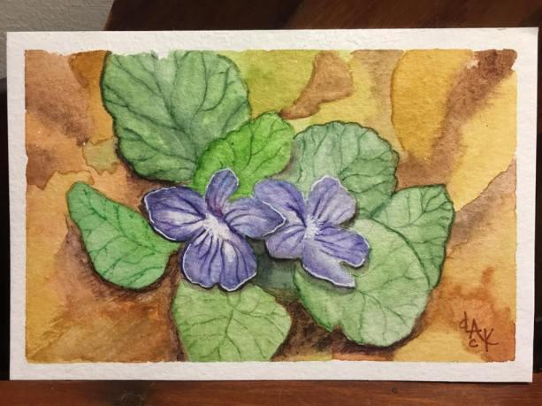 TNWWPP violets 3.20.17